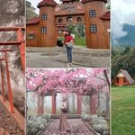 Jawa Tengah Rasa Jepang ? Sakura Hills Tawangmangu Jawabannya