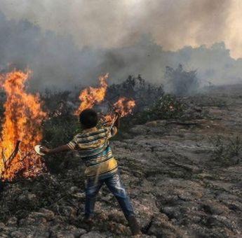 Waspada! Kebakaran Lahan Gambut Sedang Terjadi di OKI