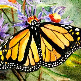 Gunakan Simbol Kupu-kupu untuk Feng Shui Cinta dan Transformasi