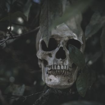 5 Tempat Terkutuk & Mengerikan, Salah satunya Pembuangan Orang Sakit