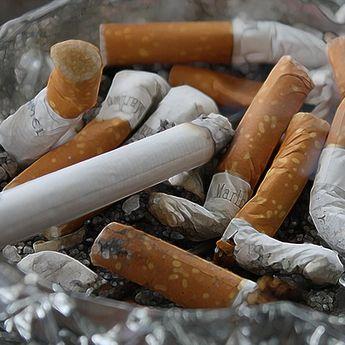 Perokok Kencangkan Sabuk! Mensos Usulkan Harga Rokok Rp 100 Ribu Per Bungkus