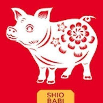 Nasib Shio Babi Sesuai dengan Waktu Kelahirannya, Cek Disini!