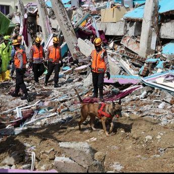 BNPB : Hingga Minggu Ke-4 Januari Terjadi 185 Bencana