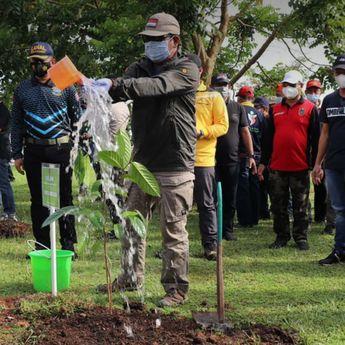 Di Akhir Masa Jabatan, Gubernur Kalsel Tanam 10 Ribu Bibit Kayu Besi