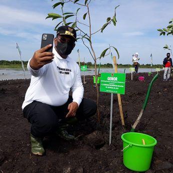 Kurangi Lahan Kritis, 1 Juta Pohon Ditanam di Seluruh Wilayah Kalsel