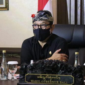 Wakil Gubernur Bali Jelaskan Kesiapan Bali Buka Pintu Masuk Internasional