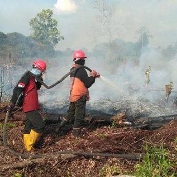 Mengenal Lebih Dekat Satgas Udara Karhutla Sumatera Selatan