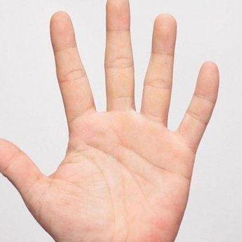Menurut Primbon Jawa, Ini 7 Tanda Garis Tangan yang Diprediksi Jadi Orang Kaya