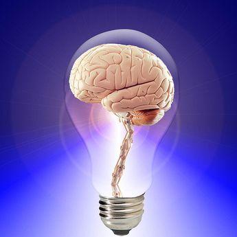 Oh Ternyata Ini Penyebab Otak Jadi Lebih Lemot, Hindari Sekarang!