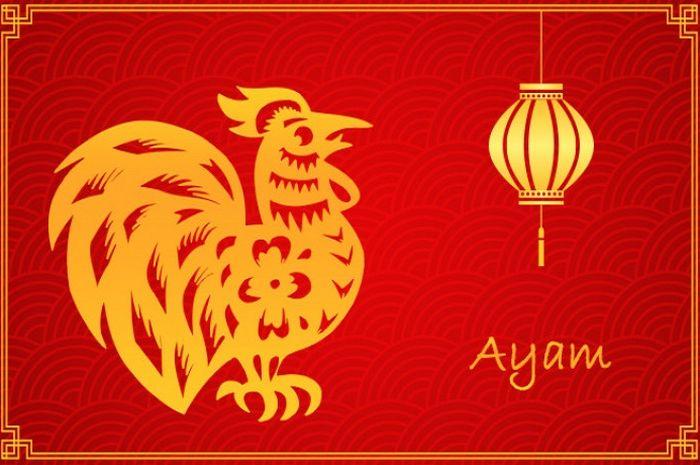Illustrasi Ramalan Shio Ayam 2020: Asmara, Keuangan, Karier dan Kesehatan
