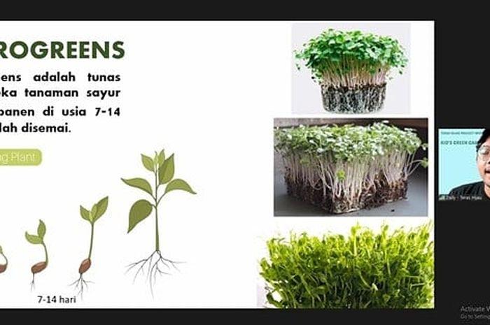 Teras Hijau Project, Melatih Siswa SD Belajar Menanam Sayuran