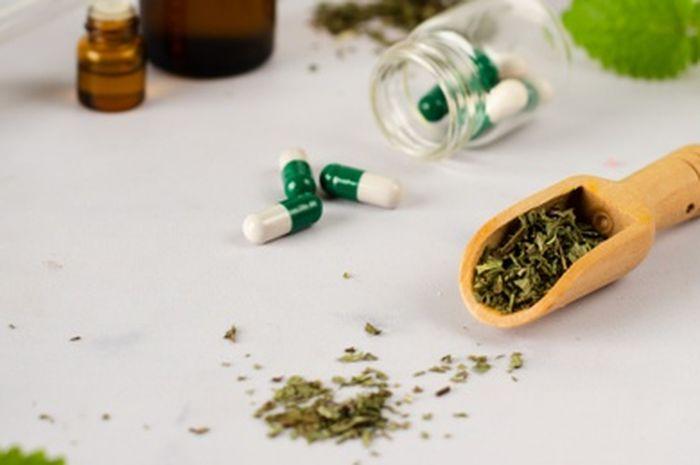 Dokter: Beberapa Obat dan Jamu Bisa Merusak Fungsi Ginjal, Ini Daftarnya